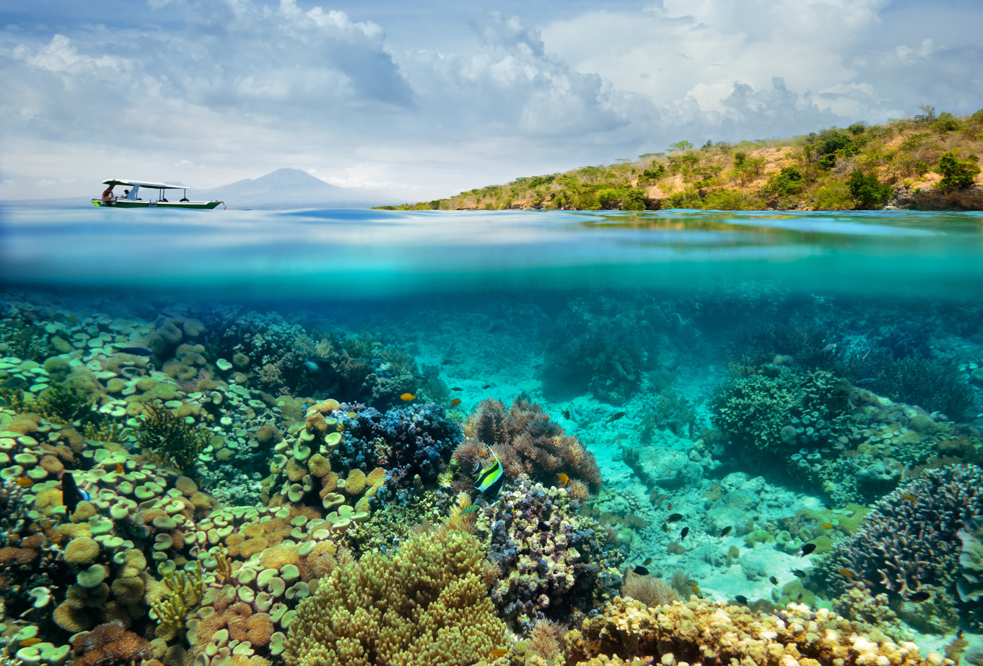 Beautiful Coral reef on background of cloudy sky and volcano.