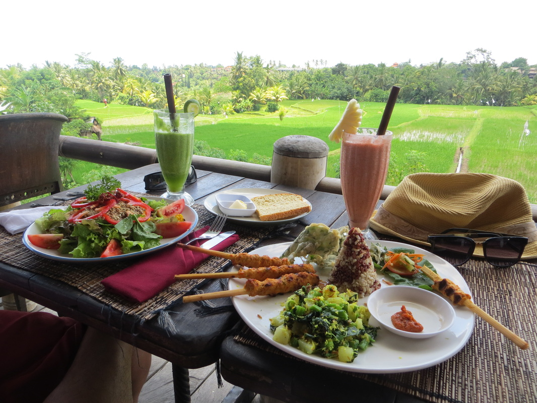 Sari-Organik-Ubud-Restaurants-Bali-Kids-Guide